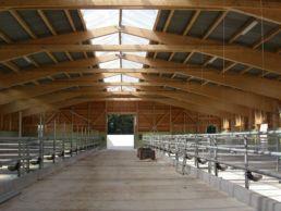 Vianco Arena